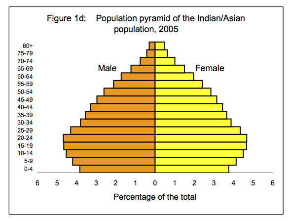 population pyramid indian